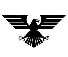AGENTIA  DE  DETECTIVI  EAGLE  ORADEA