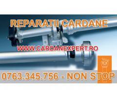 Reparatie Cardan SCANIA