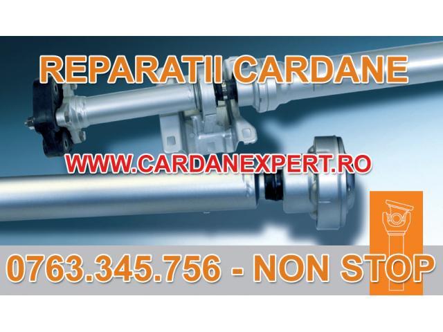 Reparatie Cardan DAF