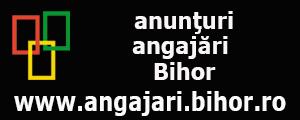 www.angajari.bihor.ro anunturi gratuite angajari  pentru judetul Bihor