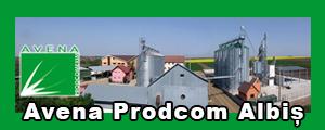www.avenaalbis.ro Avena prodcom Albis Bihor,  Ferma, agricola, producator, agricol, depozitare, grau, porumb, floarea soarelui, soia, utilaje, agricole, agricultura, cereale, Olah Sandor,